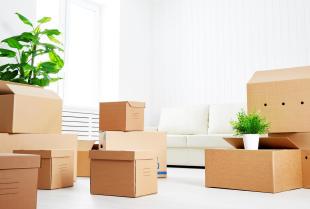 Karton - dlaczego warto używać go do pakowania?