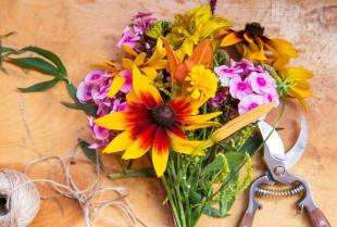 Kwiaty na różne okazje