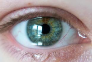 Czym się zajmuje optometrysta?