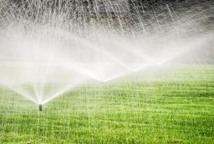 Zalety i zastosowanie automatycznego systemu nawadniania ogrodu