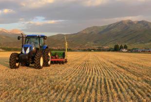 Jak znaleźć dobry serwis maszyn rolniczych?