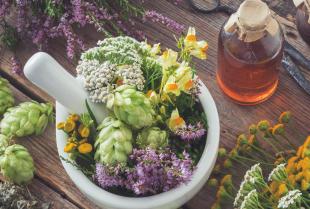 Odpowiednio dobrane zioła mogą zdziałać cuda