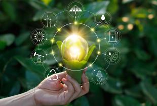 TFP uczy, w jaki sposób przedsiębiorcy powinni dbać o środowisko!