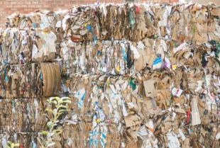 Na czym polega recykling makulatury?