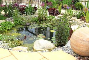Jak zbudować skalniak w ogrodzie?