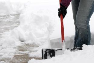 Rodzaje prace sezonowych, które można zlecić firmie sprzątającej