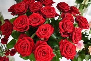 Kwiaciarnia – bukiety i kompozycje.