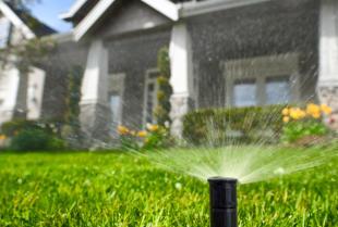 System nawadniający dla ogrodu – jak go wdrożyć?