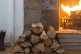 Jaki rodzaj drewna wybrać do palenia w kominku?
