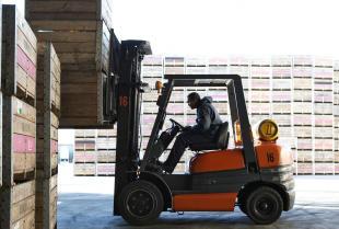 Wózki widłowe wysokiej jakości w ofercie firmy IPZ