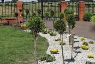 Jak stworzyć piękny przydomowy ogród?